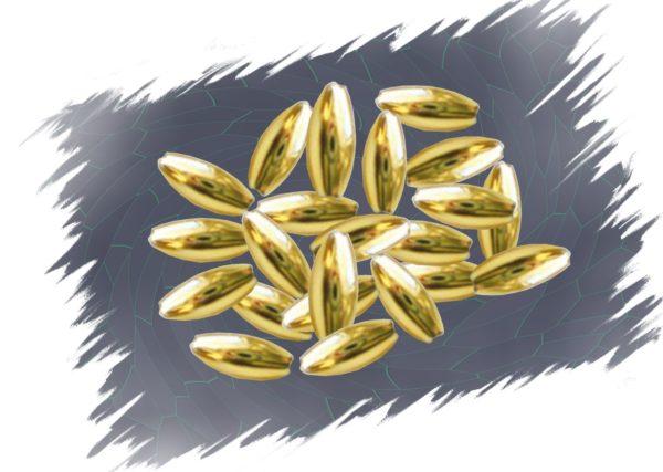 Wachsperle Olive